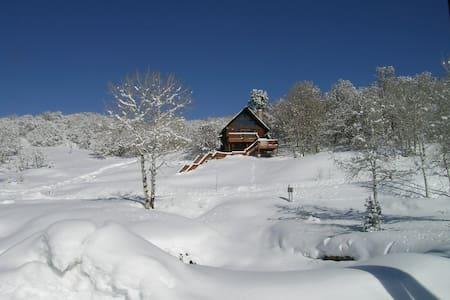 Fantastic cabin overlooking Park City - Wanship - Cabin