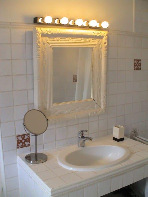Douche à l'Italienne, une vasque ,toilette