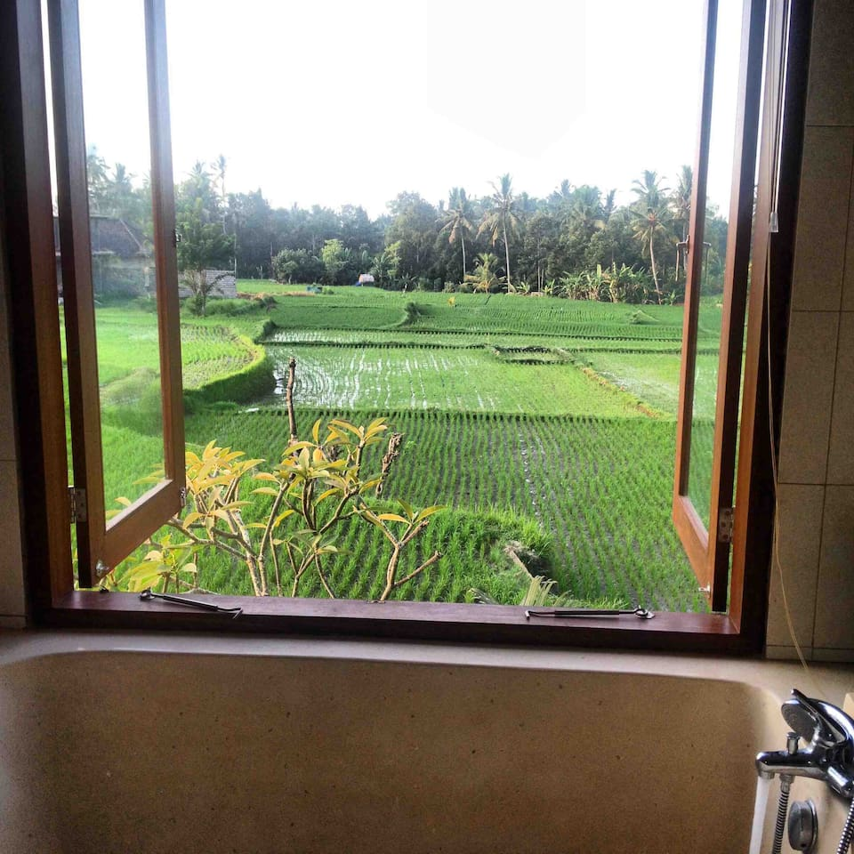 View from the master suite upstairs bathroom, above the bathtub