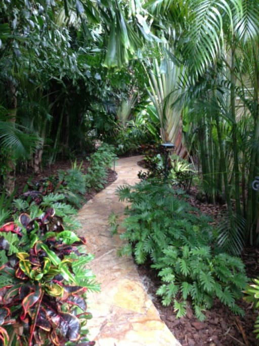 The rainforest walkway from the front to the pool area