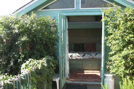 """Must-Love(Our)Dogs"" Garden Room."