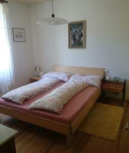 Zimmer in grüner Oase - Riehen