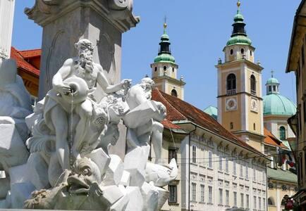 The heart of Ljubljana's Old Town   - Ljubljana - Apartmen