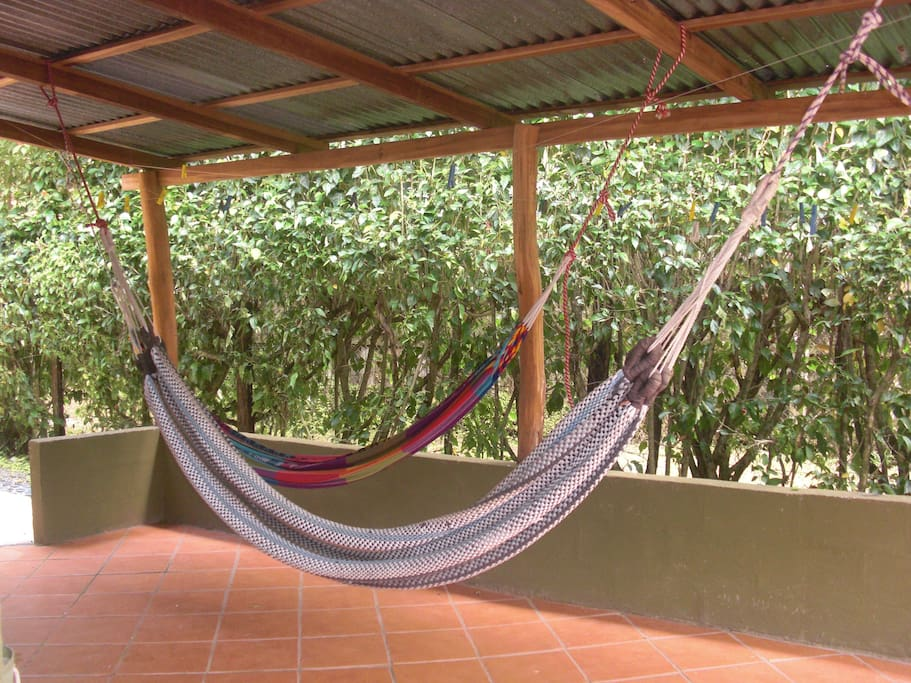 Relaxing Hammock Area