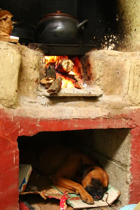 Plenty of time to relax, our wood stove in the kitchen is a nice spot.