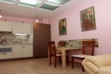 Cozy quite flat in the heart of Odessa - Appartamento
