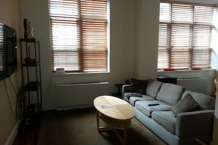 1 BR private bath Harlem modern apt - New York - Apartment