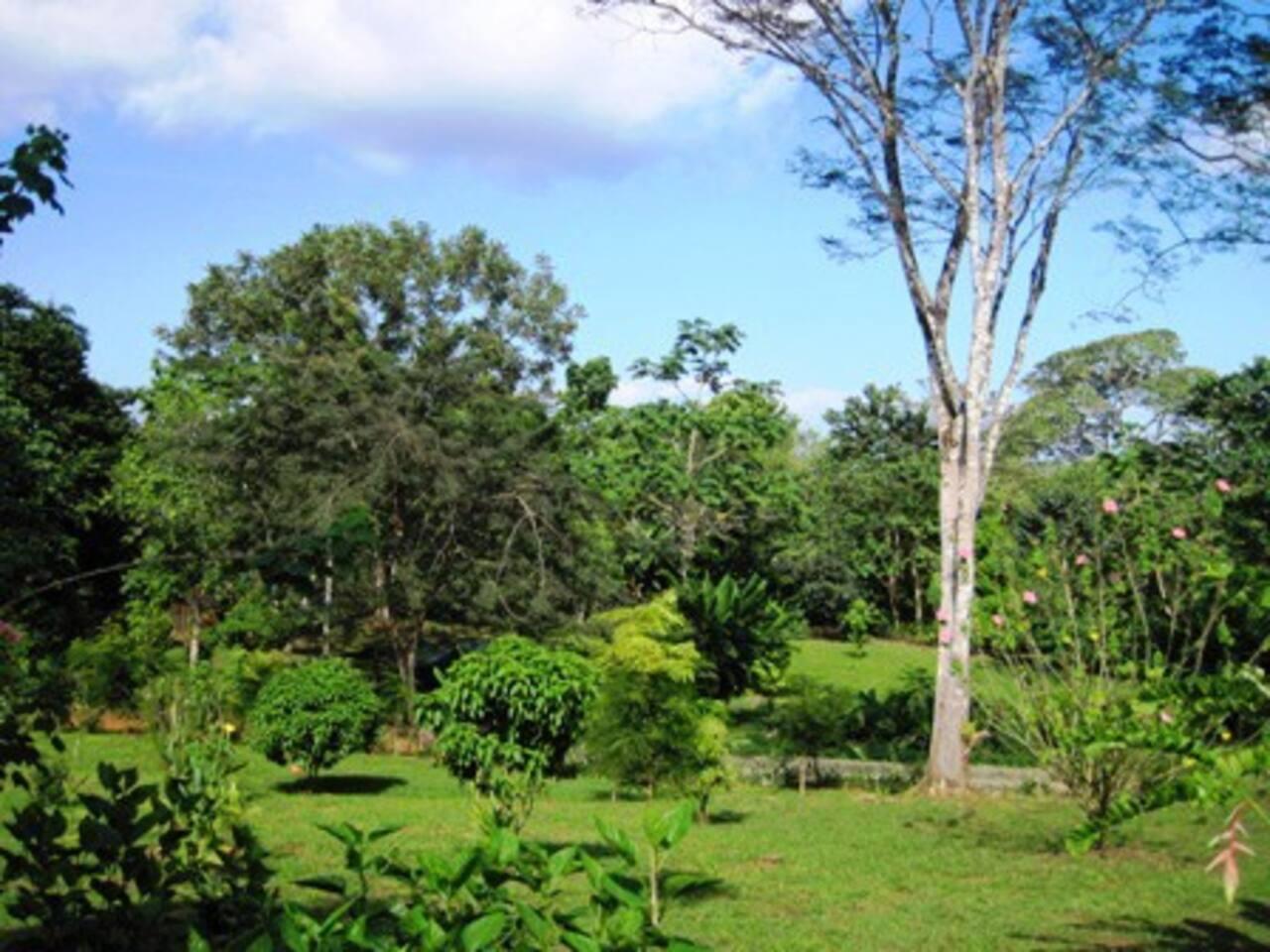Garden Hacienda