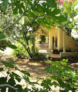 Timeless Retreat near Tucson - Casa