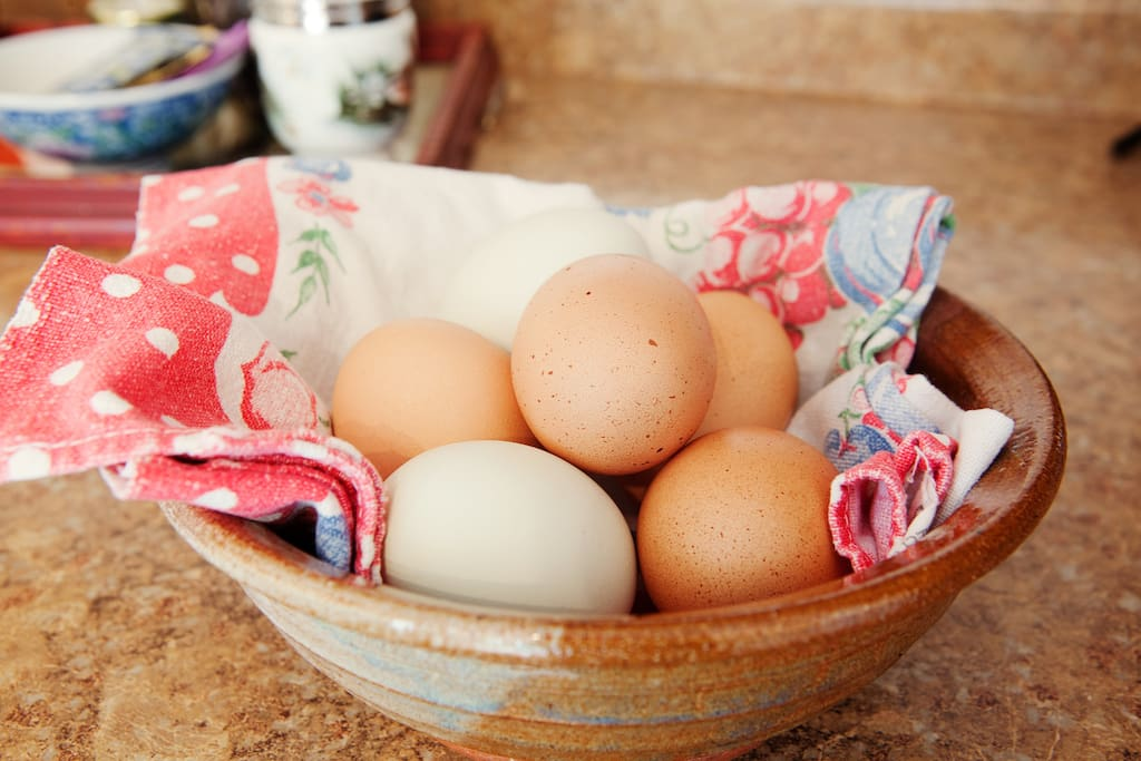 fresh eggs provided during your stay