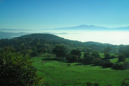 A Beautiful Country House where to be surrounded by the green Tuscany nature, just minutes away from the typical village of Roccastrada and few steps from the beautiful coast of Maremma. The best place to reach the main historic sites of the reagion.