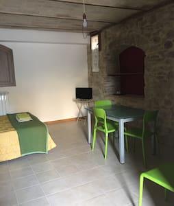 Il Sementone dependance - Assisi  - House