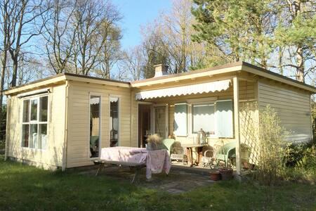 Heerlijk vakantie huisje in Zeeland - Dům