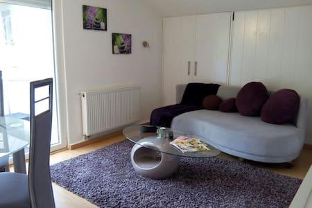 Gemütliches Raumwunder - Plochingen - Appartement