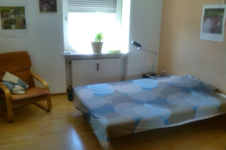 Nice Appartement in Trier's heart - Trier - Apartment