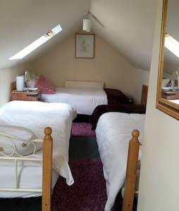 Dublin close to city compact Loft sleeps 3 - Artane - Bed & Breakfast