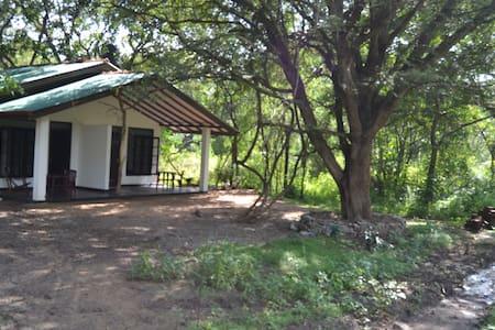 Sanka Mash Holiday Inn - Sigiriya - Villa