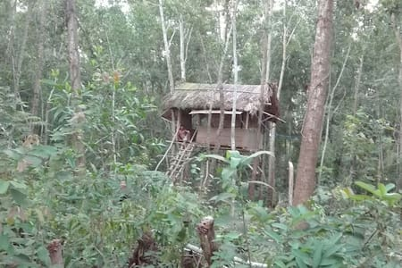BasicTree house at Thuyhouse Resort - tp. Phú Quốc