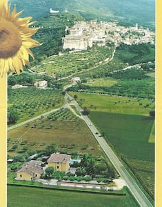 Girasole Farmhouse B&B Assisi - Assisi - Bed & Breakfast