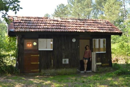 Cabane en forêt (forest cabin) - Kulübe