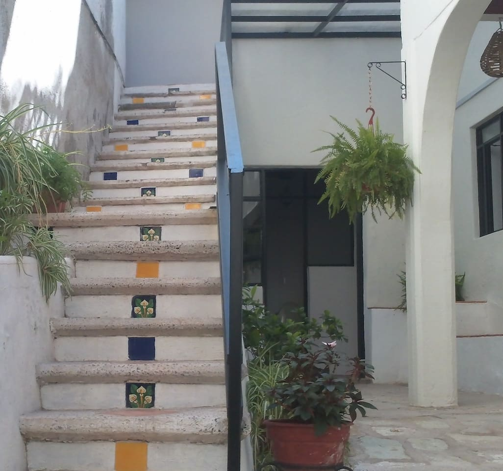 Beautiful mexican tile decorates access stairway in courtyard