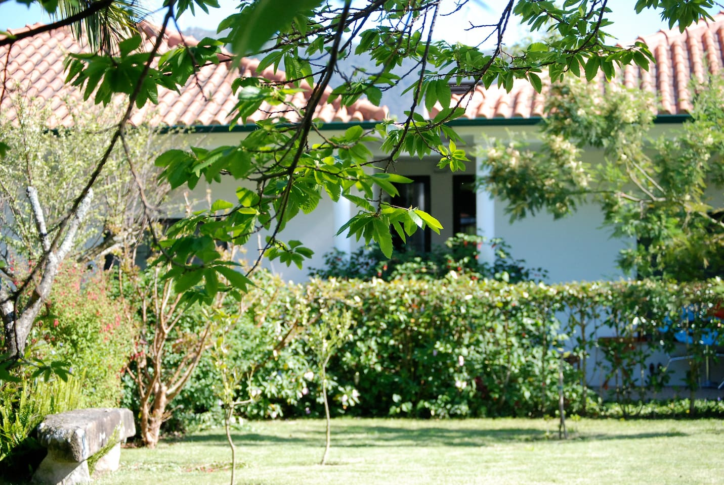 Afife self-catering apartments/garden bungalows