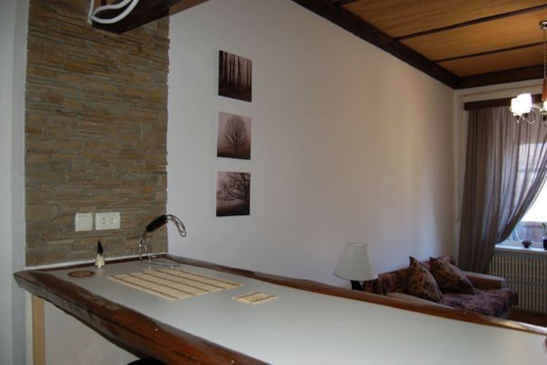 1bedroom+studio in the city center!