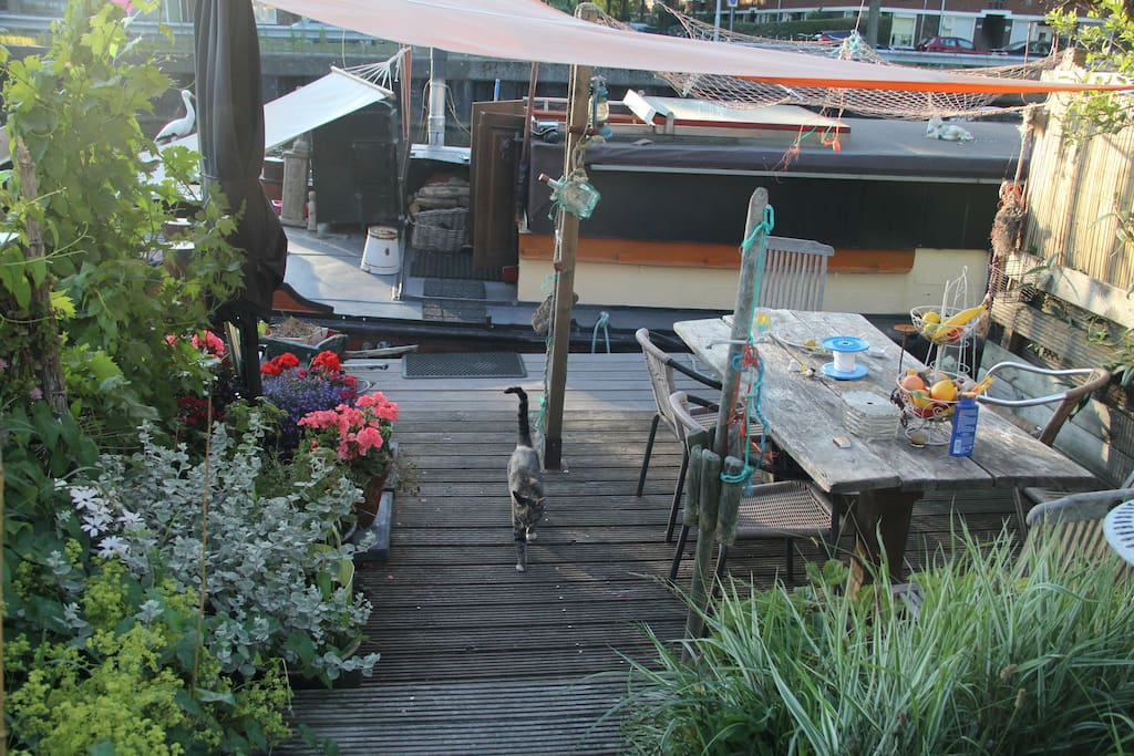 my cosy wooden terrace...