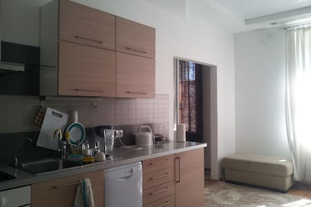 Lux 1BR in the historical center