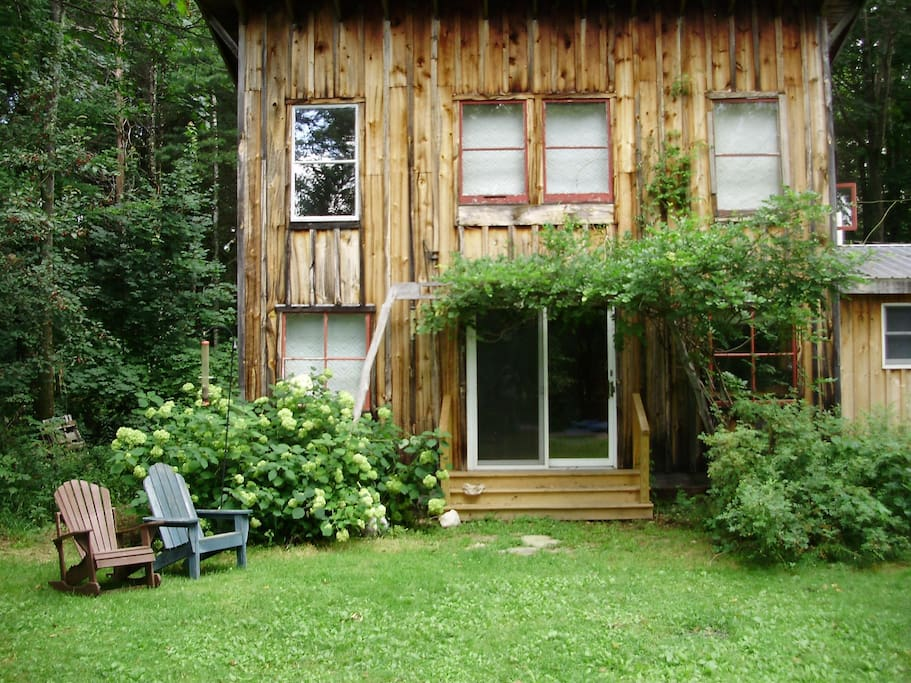 Front entrance of Cottage, with crazy vines.