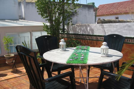 Beautiful apartment roofterrace  - Seville - Apartment