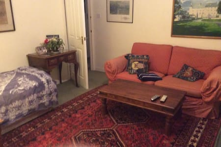 A large room with TV,WIFI,SOFA, - London - House