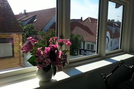 Room in cozy apartment with sea views - Allinge