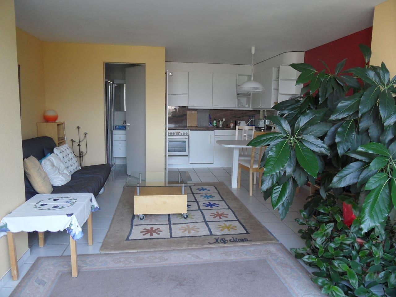Blick in den Wohn-Essraum mit Küchenzeile