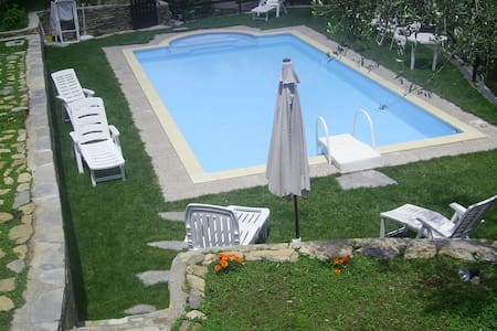 house betwheen olivaies, pool,relax - Lecchiore - House
