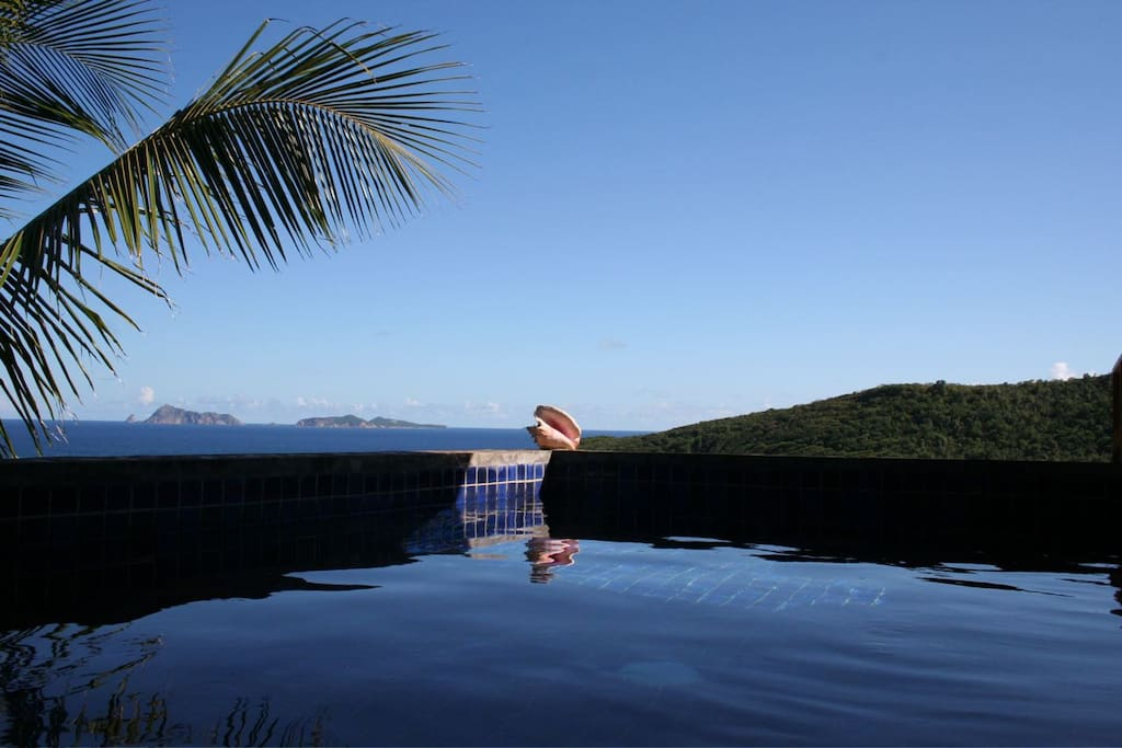 Plunge Pool and view of islands Balliceaux and Battowia
