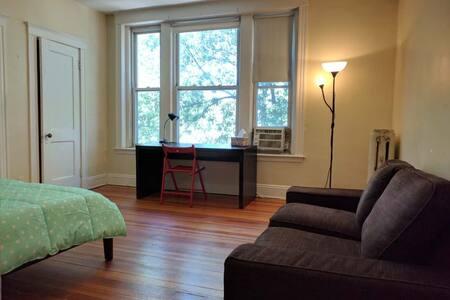 Spacious Room Near T/ walk to BU - Boston - Apartment