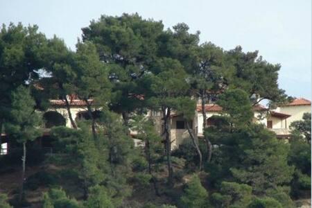 3 BD, Villa, Sea view in Posidi Kassandra - Posidi - Villa