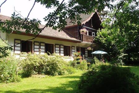 Vieille maison de caractère sous les sapins - Larringes - Villa