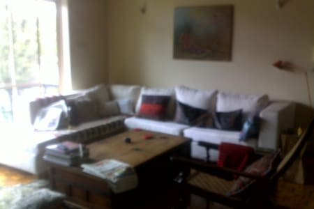 Short Let Room For Professionals - Nairobi - Wohnung