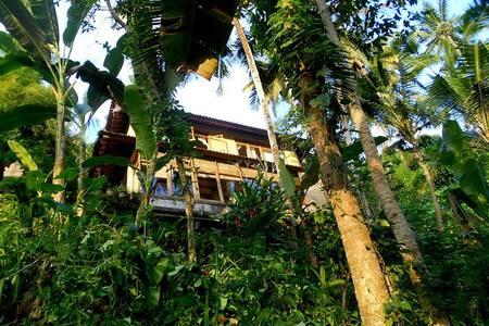 "TREE-TOP NEST ""JUNGALOW"" RIVER - Ubud - Apartment"