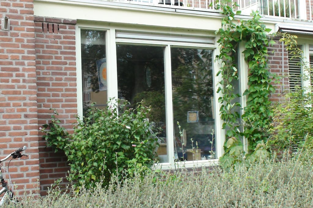 Frontwindow of the house, streetview