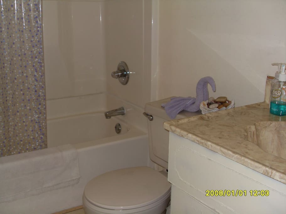 Shared guest bathroom with tub & shower