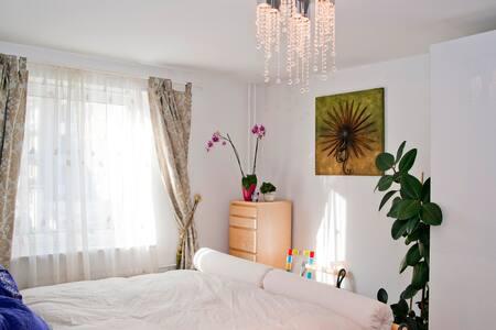 U2 Theresienstr: EUR35 room / night - Munich - Appartement