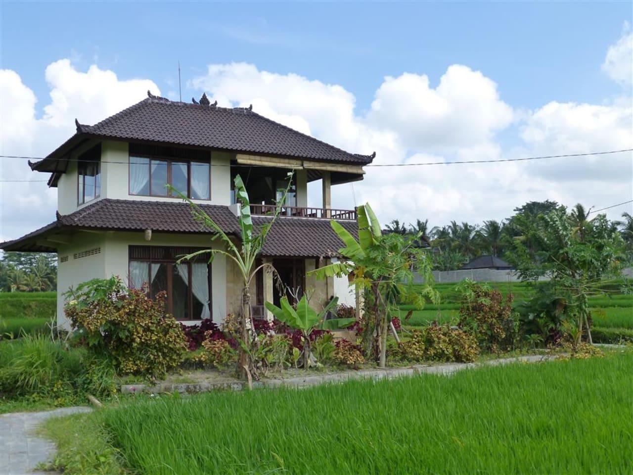 The house in Penestanan, Ubud, Bali ((SENSITIVE CONTENTS HIDDEN) Maps -(PHONE NUMBER HIDDEN))