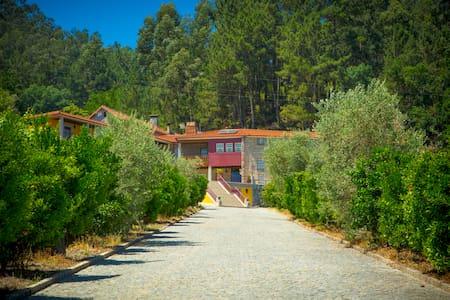 Casa em quinta privada com 9 quartos (18 pessoas) - Vilela - Talo