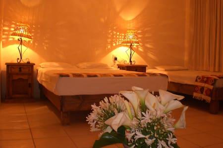 Very nice Apartments in Oaxaca  - Oaxaca