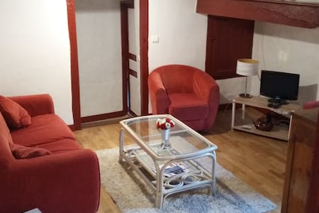 Appartement atypique dans cadre charmant - Hasparren - Apartment
