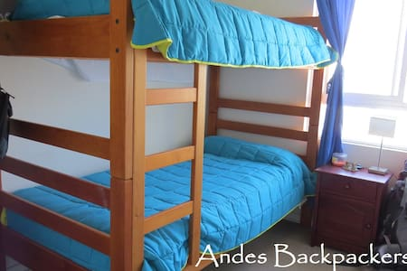Andes Backpakers Room - Lakás