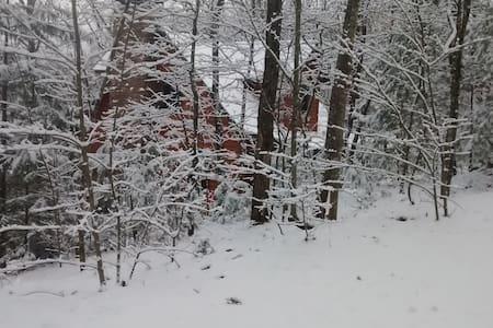 Pine Mountain Cabin Hideaway B&B